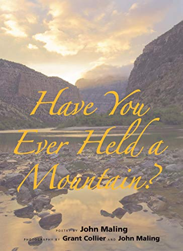 Free: Have You Ever Held a Mountain?